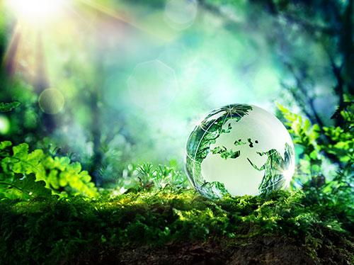 Consorzio di cooperative Ambiente
